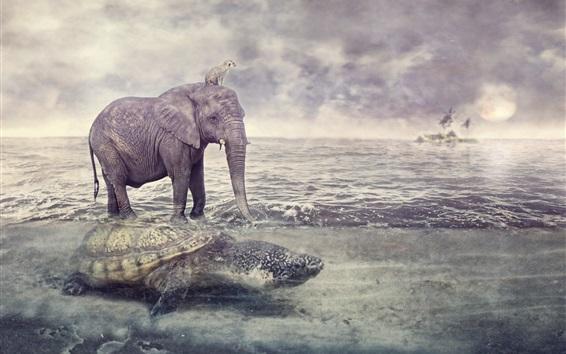 Wallpaper Elephant, turtle, sea, creative