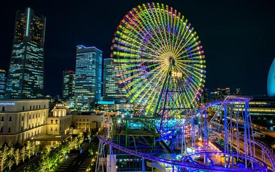 Wallpaper Ferris wheel, roller coaster, lights, city, night