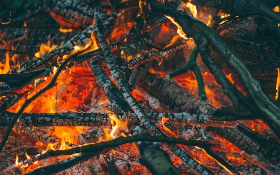 Fond d'écran Bois de chauffage, carbone, feu