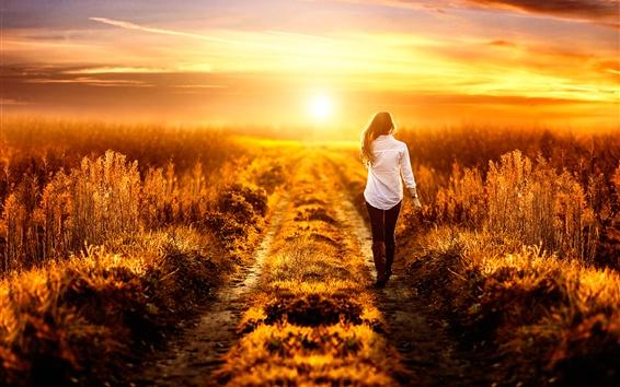Fond d'écran Fille à pied sur le terrain, été, coucher de soleil