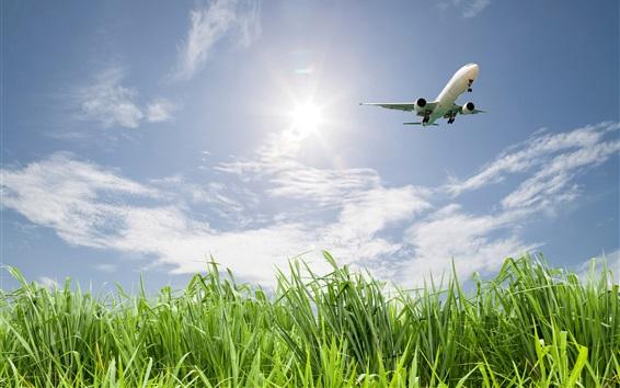Wallpaper Grass, field, plane, sky, clouds, sun