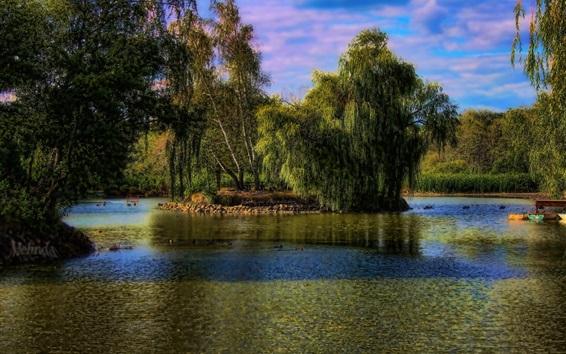 Обои Венгрия, Gyongyos, деревья, озеро, парк