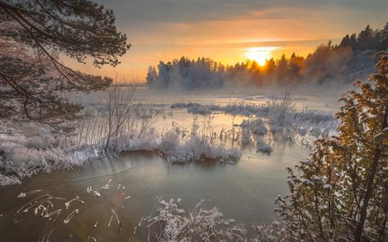 Papéis de Parede Lago, inverno, neve, árvores, por do sol