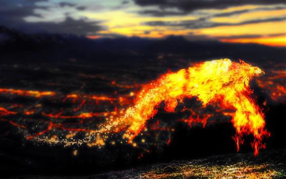 壁紙 溶岩のフェニックス