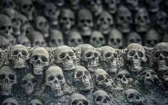 Wallpaper Many skulls, darkness world