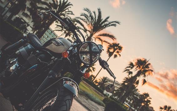 壁紙 オートバイ、ヤシの木、夕暮れ