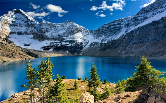 Wallpaper Mountains, snow, lake, trees, nature landscape