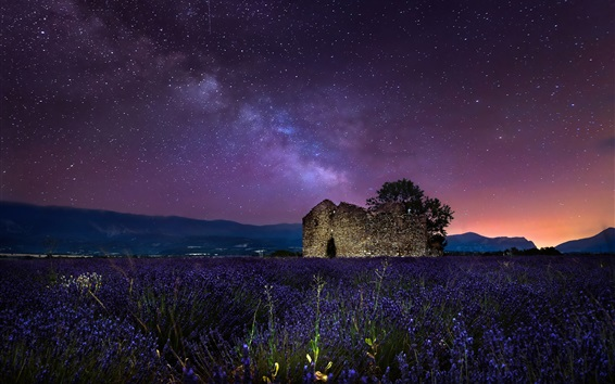 壁纸 夜晚,星空,星星,薰衣草花,石头房子