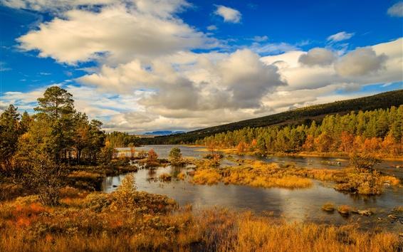 Обои Норвегия, осень, горы, деревья, река, облака