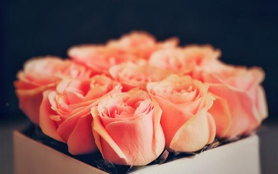 Обои Одна коробка из розовых роз