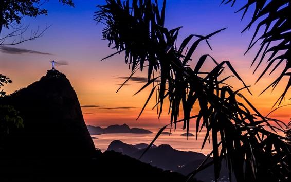 Fondos de pantalla Palmeras, Río, noche, luces, cielo rojo
