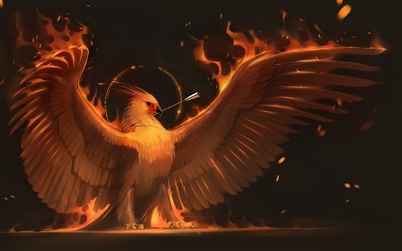 Обои Феникс, крылья, стрела, художественная фотография