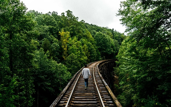 Papéis de Parede Ferroviária, árvores, homem