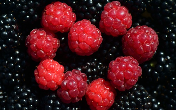 Wallpaper Red raspberries and blackberries