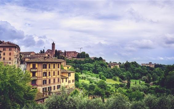 Fond d'écran Sienne, Italie, ville, arbres, bâtiments
