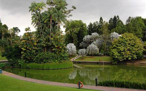 Wallpaper Singapore, Botanic Gardens, park, trees, grass