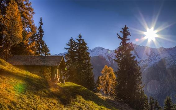 Fond d'écran Suisse, Alpes, maison, montagnes, arbres, soleil