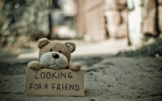 Wallpaper Teddy bear looking for a friend