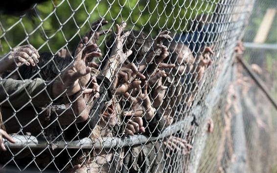 Обои Ходячие мертвецы, много рук, зомби, забор