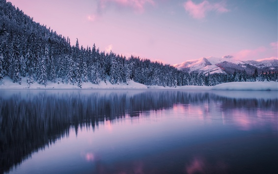 Wallpaper Washington, mountains, winter, forest, snow, Gold Creek Pond