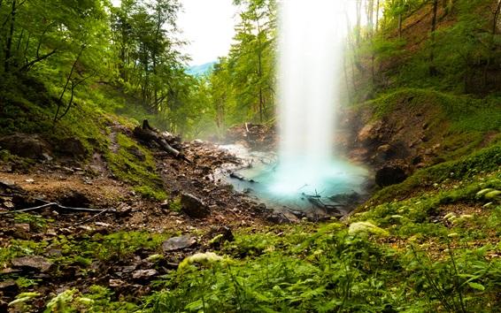 壁纸 瀑布,水,树,森林,山
