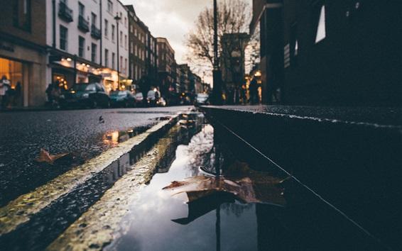 배경 화면 젖은 거리, 물, 마른 잎, 도시