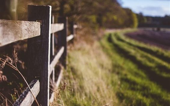 Wallpaper Wood fence, grass, field, blurry
