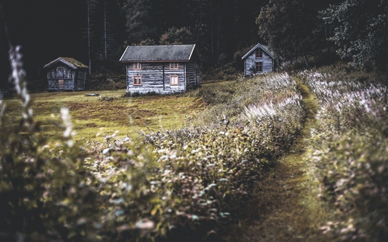 Wallpaper Wood huts, wildflowers, path, nature