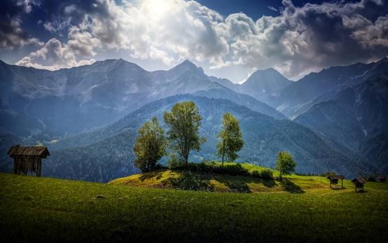 Wallpaper Austria Trees Mountains Grass Clouds Sunshine