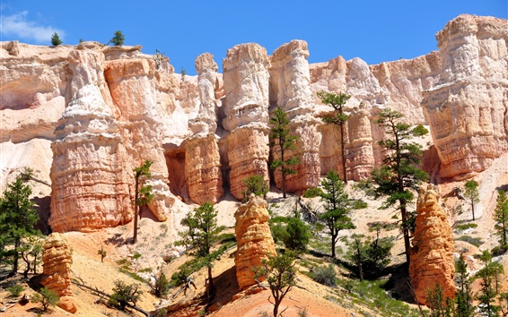 Wallpaper Bryce Canyon, Utah, USA, rocks, trees