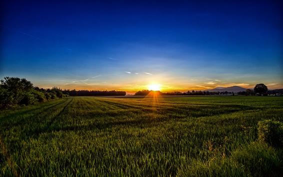 Fond d'écran Carinthie, Autriche, champs, coucher de soleil
