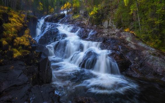 Fond d'écran Ruisseau, cascade, roches, rivière, automne