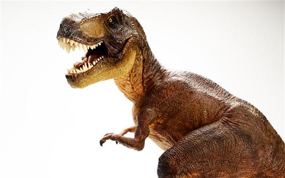 Papéis de Parede Dinossauro, fundo branco