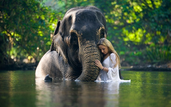 Wallpaper Elephant and girl in the water