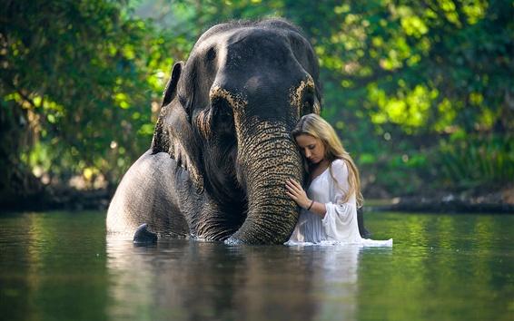Papéis de Parede Elefante e menina na água