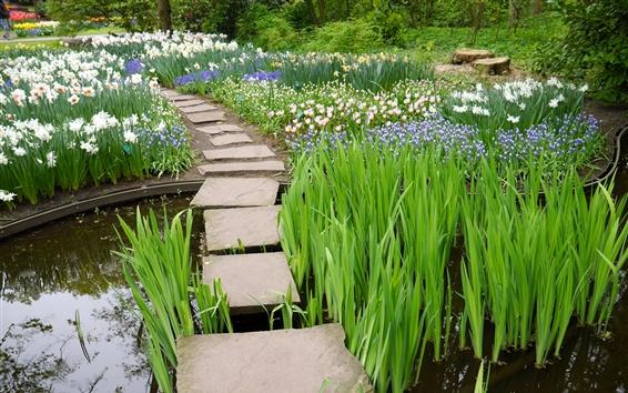 Wallpaper Flowers, path, water, garden