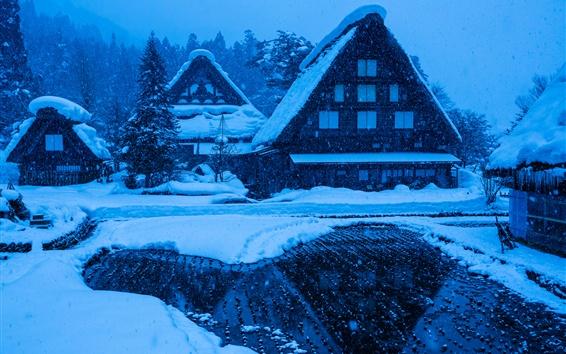 Обои Гокаяма, Ширакава-го, Япония, остров Хонсю, зима, снег, дома