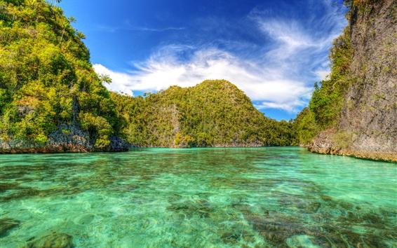 Fond d'écran Indonésie, Laguna, lac, arbres, tropical