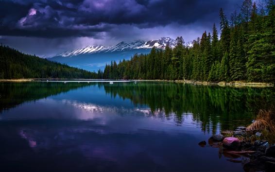 Fond d'écran Parc national de Jasper, Alberta, Canada, montagnes, arbres, lac, crépuscule