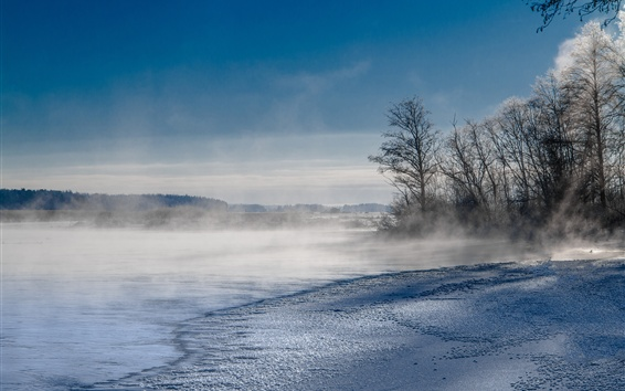 Wallpaper Lake, trees, fog, winter, snow