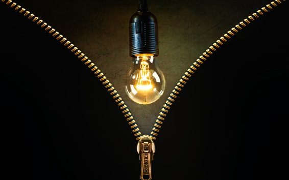 Wallpaper Light bulb, zipper, creative