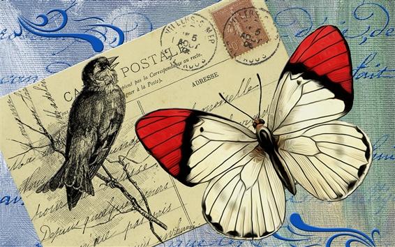 Wallpaper Postcard, butterfly, bird