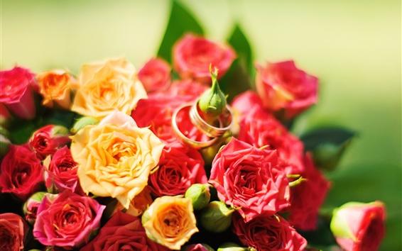 Обои Красные и желтые розы, кольца