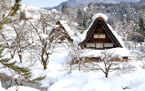 Papéis de Parede Shirakawa-go, Japão, inverno, neve, árvores, casa