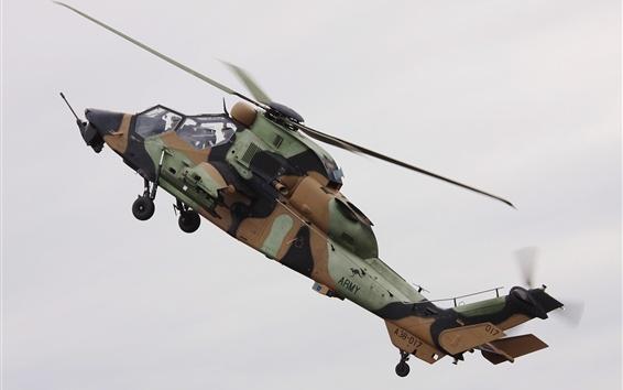 Papéis de Parede Vôo de helicóptero Tiger A38