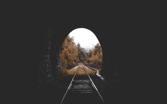 Papéis de Parede Túnel, ferrovia, árvores, outono