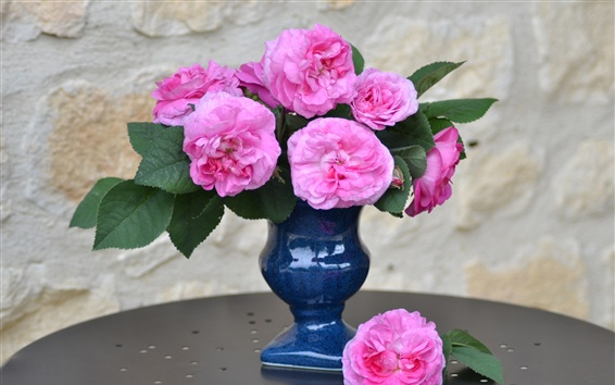 Papéis de Parede Vaso, rosa rosa, flores em casa