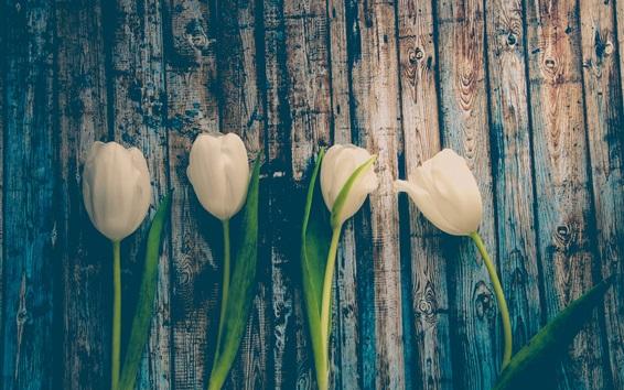 Wallpaper White tulips, wood board