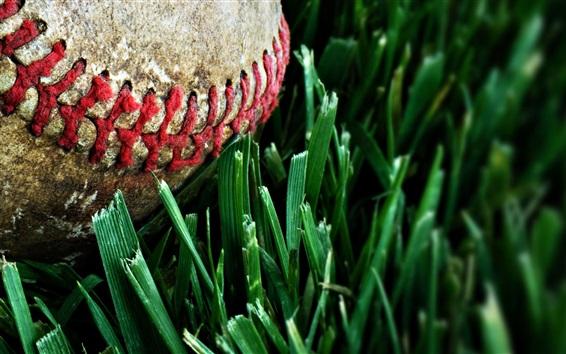 Wallpaper Baseball, dust, grass