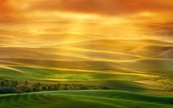 Fondos de pantalla Hermoso paisaje, colinas, campos, verde, rayos de sol, niebla, mañana